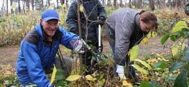 Pressemitteilung: Berwald-Projekt ist wieder aktiv…
