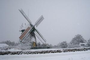 Mühle in Nebel (kt)