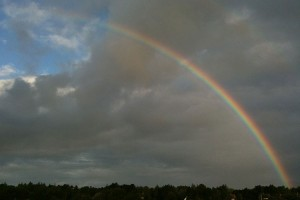 Farbenfroher Regenbogen...