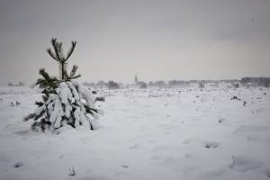 Sehr viel Schnee für Amrum...(Tadsen)