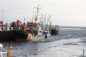 Bei Ostwind ging dem Seezeichenhafen massiv das Wasser aus