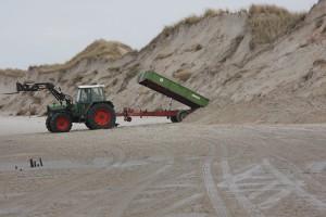 Sandladung für Sandladung werden herangefahren...