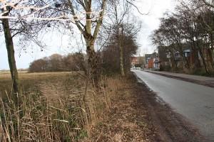 In Norddorf mussten Bäume gefällt werden...