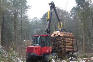 Der Rückewagen bringt das geschlagene Holz aus dem Wald...
