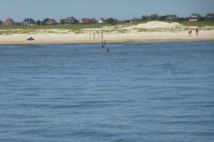 Gefahr für Wassersportler und Freizeitskipper...