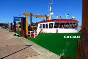 Auch andere Schiffe nutzen Anleger und Brücke...