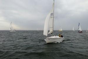 Perfekter Wind für die Segler...