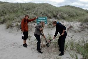 Mitarbeiter des Carl Zeiss Naturzentrums Amrum stellen neue Hinweisschilder auf