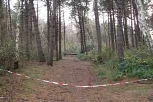 Der Amrumer Wald ist immer noch komplett gesperrt...