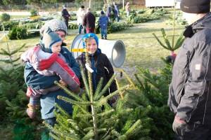 Tannenbaumverkauf am Sportplatz in Nebel, auch die ganz Kleinen waren fleißig dabei den schönsten Baum auszusuchen