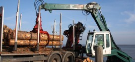 Holzverladung in Steenodde