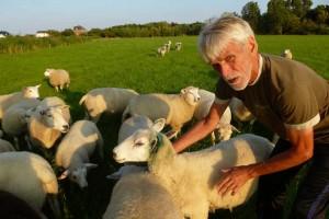 Horst Lüben mit dem verletzten Schaf mit nur noch einem Ohr