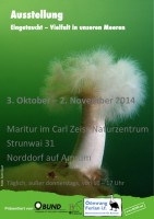Das Plakat der Ausstellung