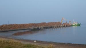 Unglaubliche Holzmengen zum Abtransport...