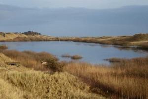 Der See dehnt sich immer weiter aus...