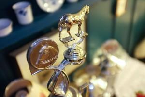 Der Pokal für die Königin Steff Classen konnte noch nicht überreicht werden, doch hoffentlich ist sie beim nächsten Ringreiten dabei...