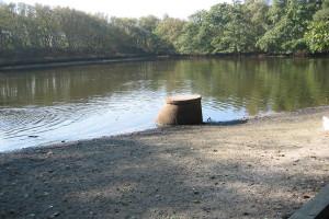 Wasserstand der letzten Jahre bereitete Sorgen...