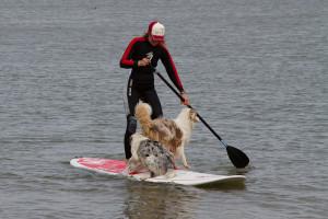 ...Endlich ein Sport, den ich gemeinsam mit meinen Tieren ausüben kann...