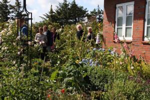 Immer rein in den Garten: Claudia Derichs bei ihrer Führung
