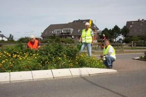Schon gewohntes Bild... einige Mitglieder der Aktiv-Gruppe bei Pflanzarbeiten