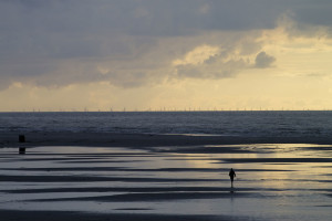 Windpark Amrumbank West als Luftspiegelung am Horizont...