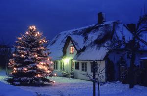 Wird es so weihnachtlich?