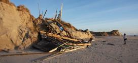 Schadensbericht der Landesküstenschützer belegt die Auswirkungen der Sturmsaison an Amrums sandigen Küsten…