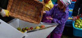 Erntedank im Kindergarten… mit Kartoffelfeuer und Apfelsaft in den Herbst.