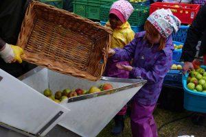 Was passiert hier mit unseren Äpfeln...? Foto: Hölscher