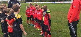 TSV Amrum: Alle Nachwuchsmannschaften siegreich