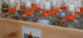 Amrums erster Gin! Think global – drink local…