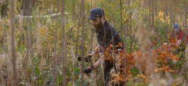 Über 50Ehrenamtlicheim Einsatz für einen stabilen Inselwald −das Bergwaldprojekt auf Amrum