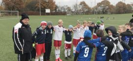 TSV Amrum: Fußballnachwuchs geht leer aus